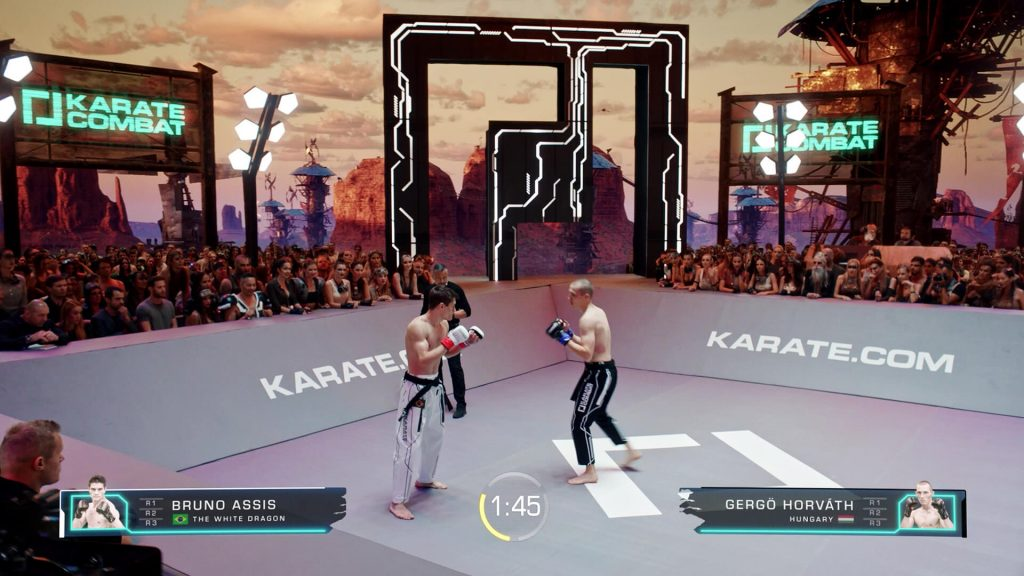 Karate Combat Unreal Engine